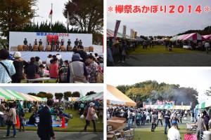 欅祭あかぼり2014
